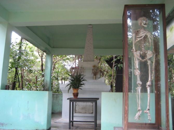 南传佛教寺院里的白骨——不净修习 - venesluo - venesluo的博客